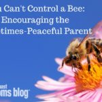 You Can't Control a Bee: Encouraging the Sometimes-Peaceful Parent