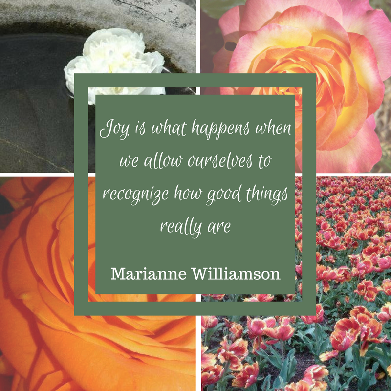 practicing gratefulness is not only about appreciating what you have its also about making what you have better.