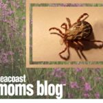 Lyme Disease: What Every Mom Needs To Know
