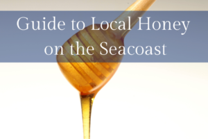 Local Honey on the Seacoast