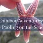 Outdoor Adventures: Tide Pooling on the Seacoast