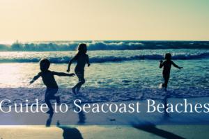 Seacoast Beaches