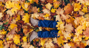 Sensory Friendly Activities on the Seacoast this fall