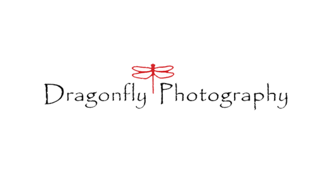 Dragonfly photography on the Seacoast