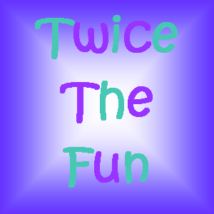 twice the fun seacoast indoor play places