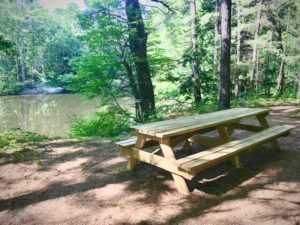 Picnic Table by river