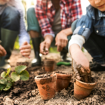 8 Questions About Seacoast Gardening With Kids, Answered