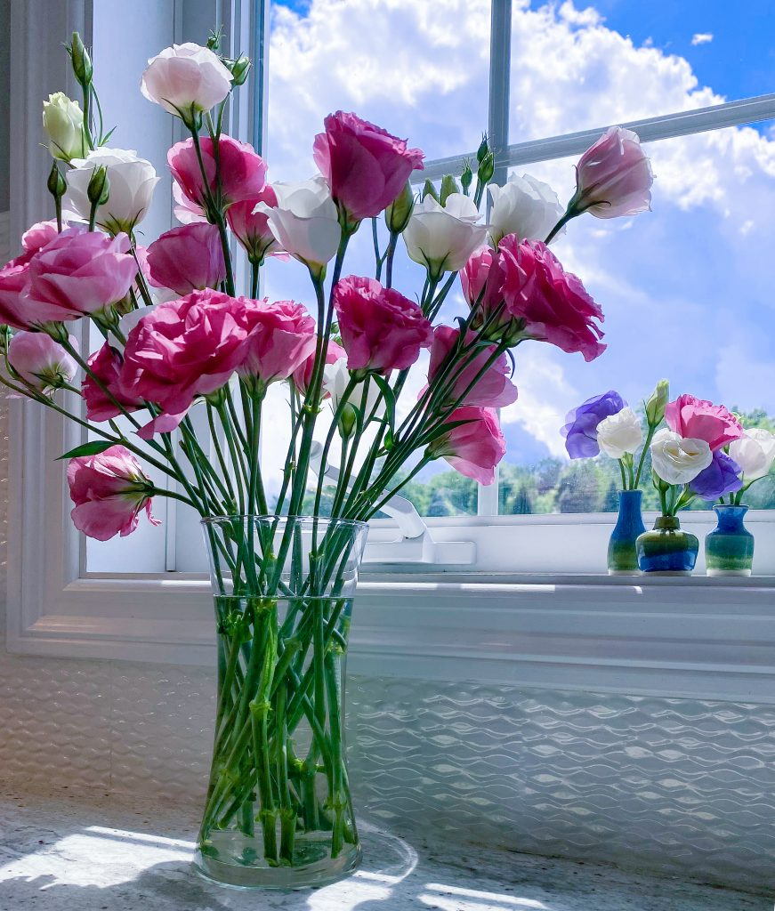 Lisianthus and Outdoor Lifestyle