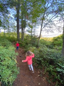 winnie the pooh trail - one of the great Seacoast hikes