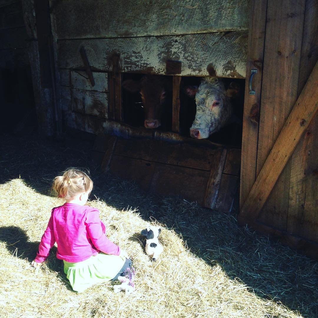 farm kids consider animals their friends