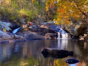 gonic falls in fall