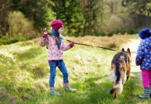 Girls walk their dog